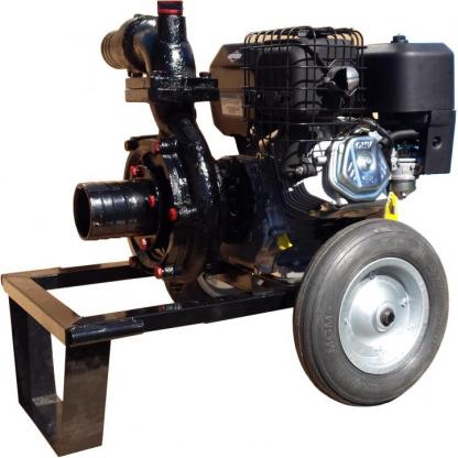 Motopompa DWP 420 BS4X-Apa fierbinte si reziduala - Benzina 14 CP Briggs & Stratton sau Honda (Automorsanta)