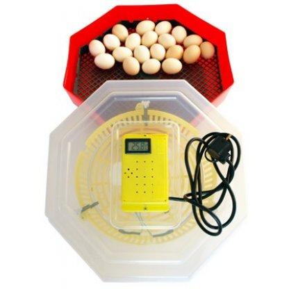 Incubator oua 41 gaina sau 74 prepelita CLEO 5D-cu termometru si dispozitiv de intoarcere oua