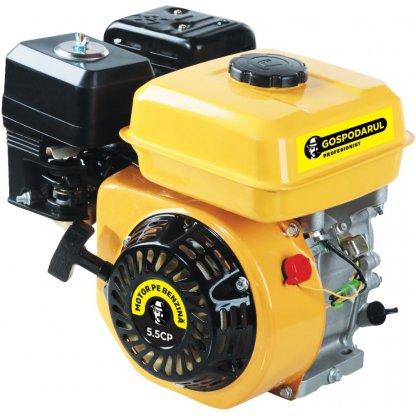 Motor pe Benzina - Uz General - 5.5 Cp - Gospodarul Profesionist